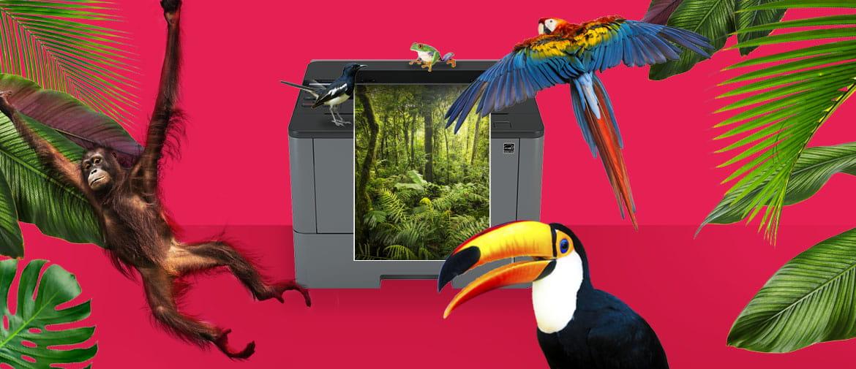 Une imprimante Brother imprimant une scène de la forêt tropicale sur un fond rose coloré avec des animaux exotiques, des oiseaux, des plantes et des arbres pour marquer notre engagement environnemental