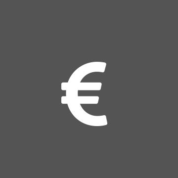 Symbole de l'euro blanc sur fond de cercle gris