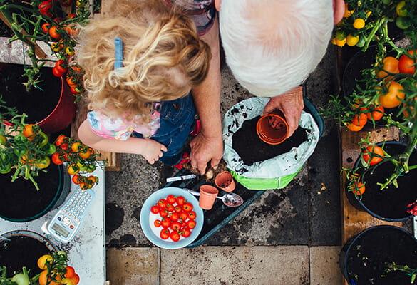 En extérieur : pour ne pas vous planter en jardinant !