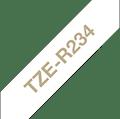 TZE-R234 label supplies