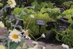 La GL-h100 idéale pour le jardin