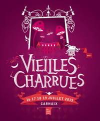 Brother partenaire des Vieilles Charrues 2015