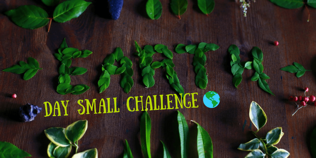 earth day small challenge