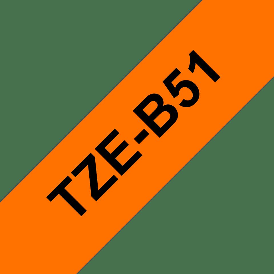 TZeB51_main